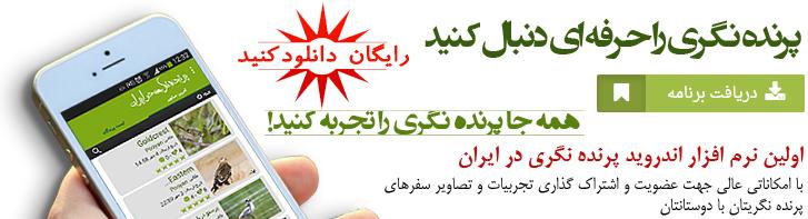 اولین نرم افزار اندروید پرنده نگری در ایران » سایت تخصصی پرنده ...پرنده نگری در ایران - IBW